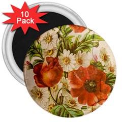 Poppy 2507631 960 720 3  Magnets (10 Pack)