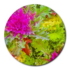 Colored Plants Photo Round Mousepads