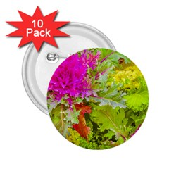 Colored Plants Photo 2 25  Buttons (10 Pack)