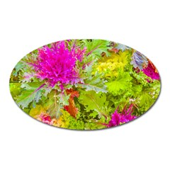 Colored Plants Photo Oval Magnet