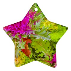 Colored Plants Photo Star Ornament (two Sides)