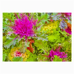Colored Plants Photo Large Glasses Cloth