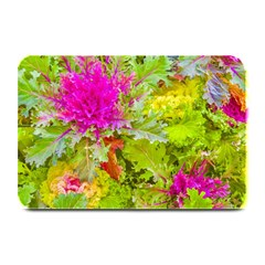 Colored Plants Photo Plate Mats