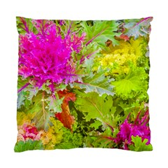 Colored Plants Photo Standard Cushion Case (two Sides)