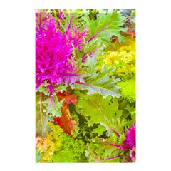 Colored Plants Photo Shower Curtain 48  X 72  (small)
