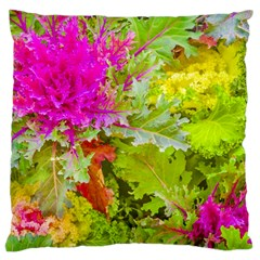 Colored Plants Photo Large Cushion Case (one Side)