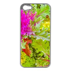 Colored Plants Photo Apple Iphone 5 Case (silver)