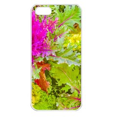 Colored Plants Photo Apple Iphone 5 Seamless Case (white)