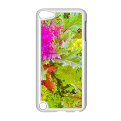 Colored Plants Photo Apple Ipod Touch 5 Case (white)