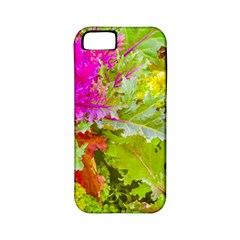 Colored Plants Photo Apple Iphone 5 Classic Hardshell Case (pc+silicone)