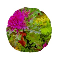 Colored Plants Photo Standard 15  Premium Round Cushions