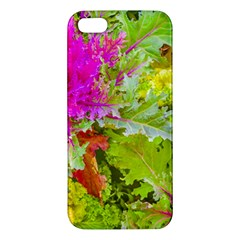 Colored Plants Photo Apple Iphone 5 Premium Hardshell Case