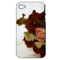 Shabby 1814373 960 720 Apple Iphone 4/4s Hardshell Case (pc+silicone)