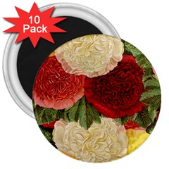 Flowers 1776429 1920 3  Magnets (10 Pack)