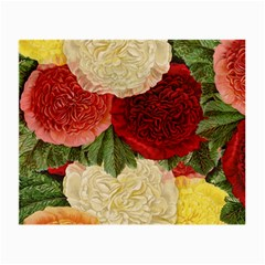 Flowers 1776429 1920 Small Glasses Cloth (2 Side)