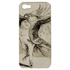 Bird 1515866 1280 Apple Iphone 5 Hardshell Case