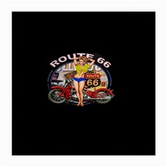 Route 66 Medium Glasses Cloth