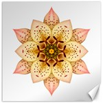 Asiatic Lily II Flower Mandala Canvas 16  x 16   16 x16 Canvas - 1