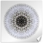 Dandelion Head Flower Mandala Canvas 16  x 16   16 x16 Canvas - 1