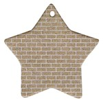 BRICK1 WHITE MARBLE & SAND Star Ornament (Two Sides) Front
