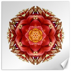 Red And Yellow Dahlia Iii Flower Mandala Canvas 20  X 20