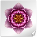 Water Lily X Flower Mandala Canvas 12  x 12   12 x12 Canvas - 1