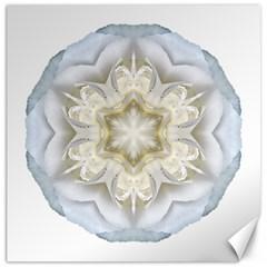 White Begonia Ii Flower Mandala Canvas 16  X 16