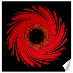 Dying Amaryllis Vii Flower Mandala Canvas 12  X 12