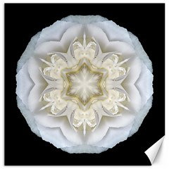 White Begonia Ii Flower Mandala Canvas 16  X 16