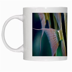 Angelfish 1 White Mugs