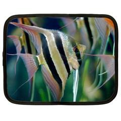 Angelfish 1 Netbook Case (xl)