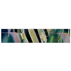 Angelfish 1 Small Flano Scarf