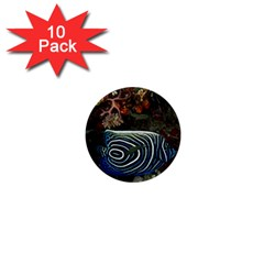 Angelfish 2 1  Mini Buttons (10 Pack)