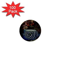 Angelfish 2 1  Mini Buttons (100 Pack)