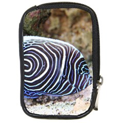 Angelfish 3 Compact Camera Cases