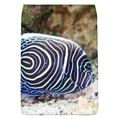 Angelfish 3 Flap Covers (l)