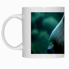 Angelfish 4 White Mugs