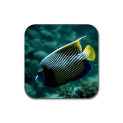 Angelfish 4 Rubber Coaster (square)