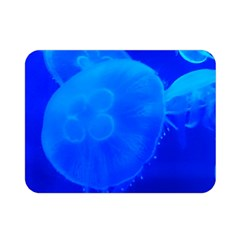Blue Jellyfish 1 Double Sided Flano Blanket (mini)