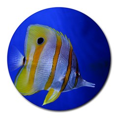 Butterfly Fish 1 Round Mousepads