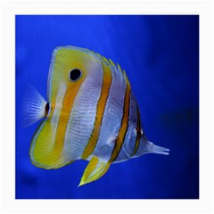 Butterfly Fish 1 Medium Glasses Cloth (2 Side)