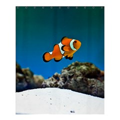 Clownfish 1 Shower Curtain 60  X 72  (medium)