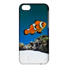 Clownfish 1 Apple Iphone 5c Hardshell Case