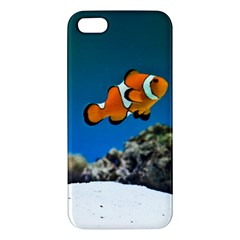 Clownfish 1 Iphone 5s/ Se Premium Hardshell Case