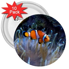 Clownfish 2 3  Buttons (10 Pack)