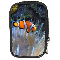 Clownfish 2 Compact Camera Cases