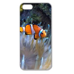 Clownfish 2 Apple Seamless Iphone 5 Case (clear)