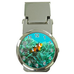 Clownfish 3 Money Clip Watches