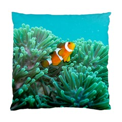 Clownfish 3 Standard Cushion Case (one Side)