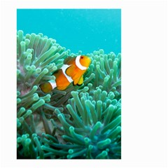 Clownfish 3 Small Garden Flag (two Sides)